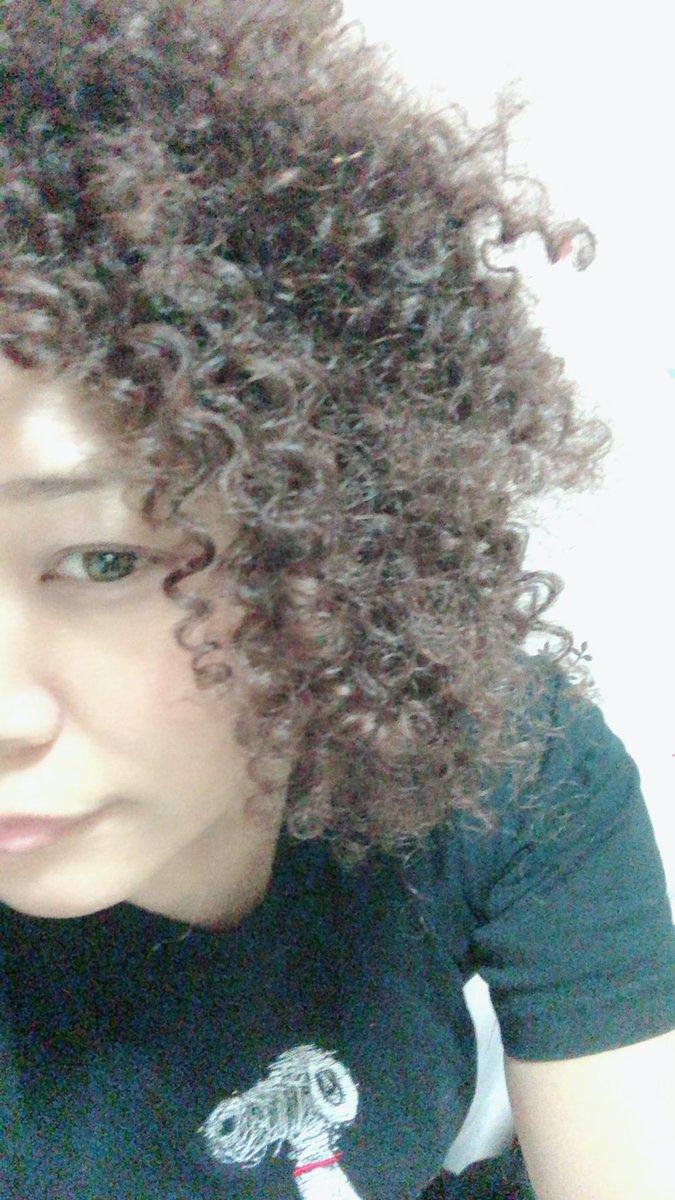 Afro is back  最強の髪型で闘う  つよい気持ち つよい愛 https://t.co/zLnW1vpuTh