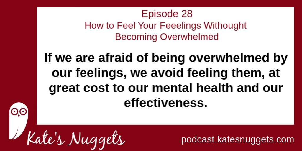 If we are afraid of being overwhelmed by our feelings, we avoid feeling them, at great cost to our mental health and our effectiveness.   Episode Length: 18 minutes LISTEN NOW: https://podcast.katesnuggets.com/28   #peakperfromance #highachievement #emotionalintelligence pic.twitter.com/WgZQHXep1E