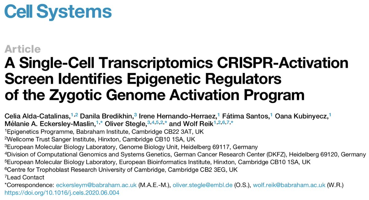 Paper alert!🎉 'A Single-Cell Transcriptomics CRISPR-Activation Screen Identifies #Epigenetic Regulators of the Zygotic Genome Activation Program' online now @CellSystemsCP - check first author @CeliaAlda9's thread for more details! 👇