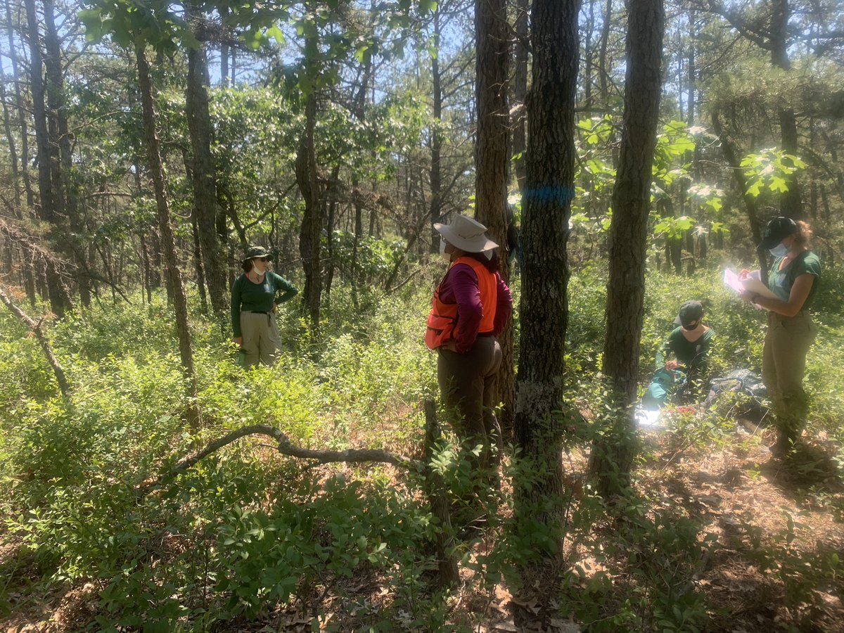 Forest Health Monitoring Training with our all female scientist intern team!! #WomenInSTEM <br>http://pic.twitter.com/LamFDlfLFx
