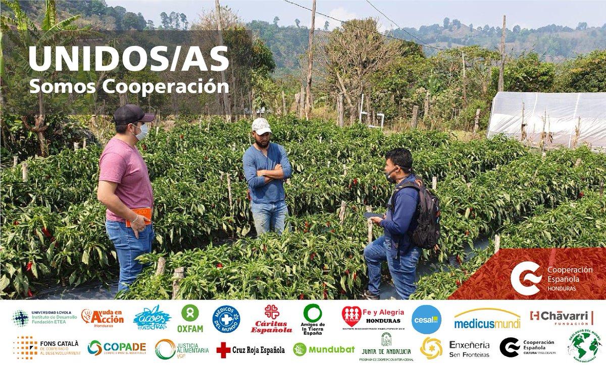 La @CooperacionESP en #Honduras se caracteriza por la riqueza y diversidad de sus actores. Somos @AECID_es , ONGD españolas,comunidades autónomas,cooperantes, empresas, universidades, municipios, voluntarios/as, entre otros. 🇪🇸🇭🇳#SomosCooperación #TeamEurope🇪🇺 https://t.co/CFX91BWOi0