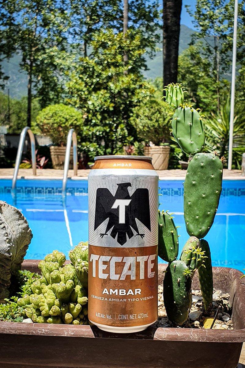 Extrañamente esta cerveza la producen en Monterrey pero no la hemos visto en tiendas locales, la conseguimos a través de Amazon. ¿Ya la probaron? Estilo Vienna, trae 4.0% de alcohol. Nos salio en $420 en 24. #Tecate #Ambar #Vienna #tkt #Cerveza #lordcerveza https://t.co/dRQeWUXJkm