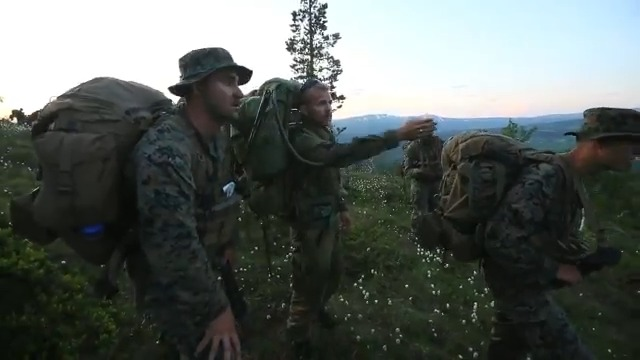 Strength in numbers. @USMCFEA Marines put in work in a mountain warfare field exercise in Norway 🇳🇴 to develop small-unit leadership and enhance abilities to maneuver in mountainous terrain with a key @NATO partner. #KnowYourMil #WeAreNATO