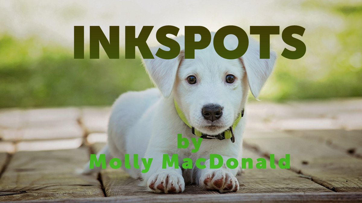 What's in a Name? by Molly MacDonald via @scottmacnotes https://t.co/9GGLq9sb2O  Today's infants sport much more imaginative, colorful names than we have: like Amarylis, Mikayden, Maxton, Kiera, Beckett, Jaylee and Maverick, to name just a few.  #MondayBlogs #pets #dogs https://t.co/y2uv56YW38