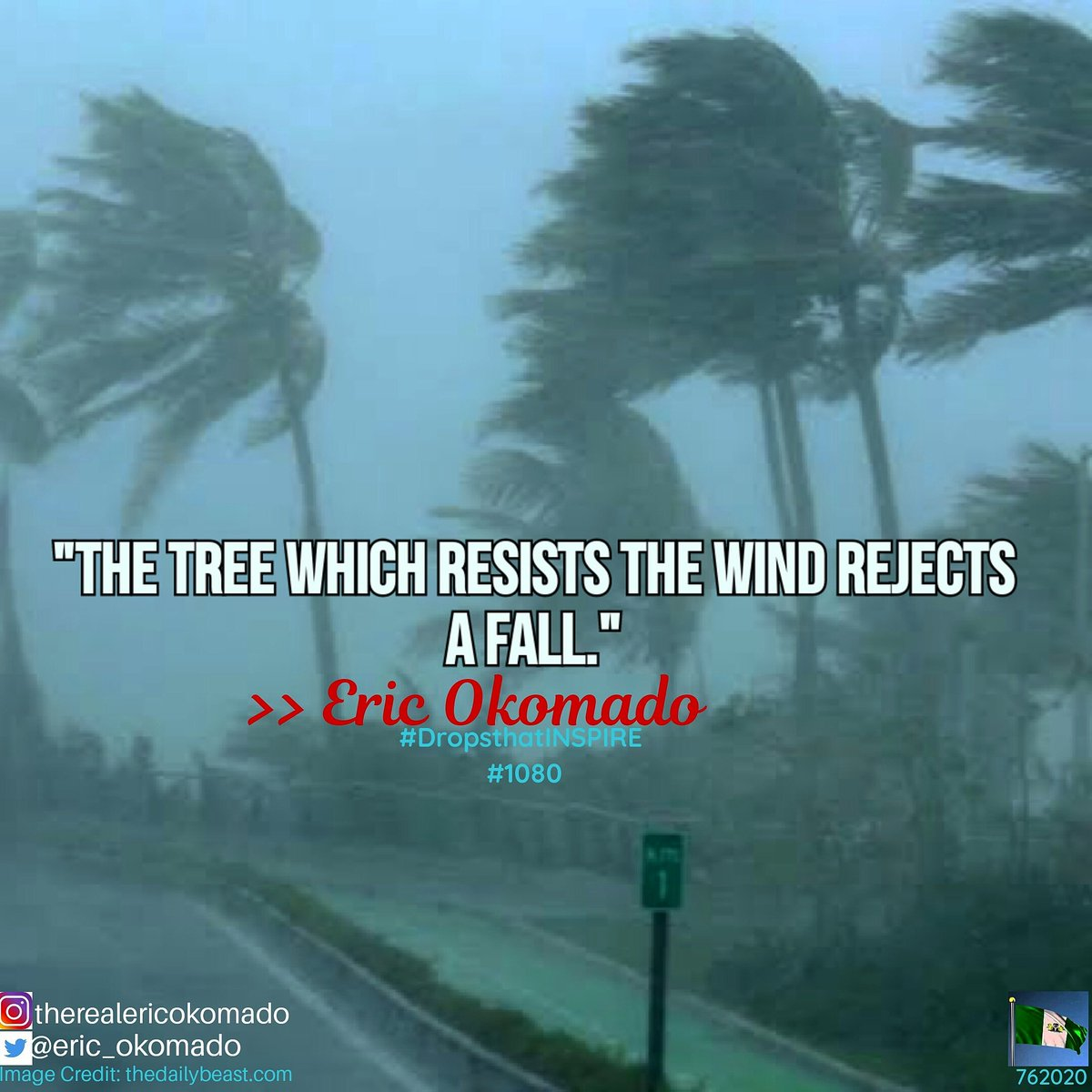 Stand firm; Be determined to resist all the forces bent on bringing you down.  #DropsthatINSPIRE #BeINSPIREDtoday  #MondayMotivaton #success #trees #COVID19 #life #mondaythoughts #friends #ThinkBIGSundayWithMarsha #lasisi #bend #writersofinstagram #f4f #follow4followback https://t.co/j8Ig097Lzq