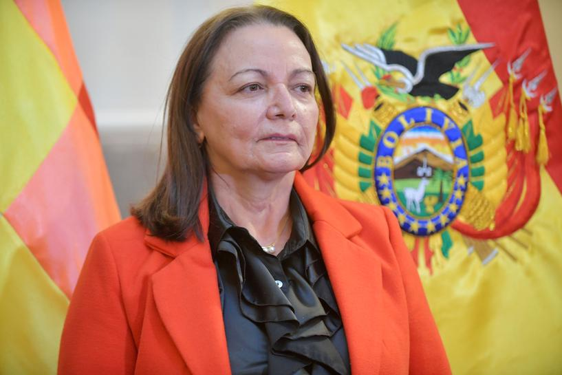 Bolivia's Health Minister María Eidy Roca is in stable condition after testing positive for #COVID19.  https://t.co/L9n1kDxCKM https://t.co/iNTvQ12VpY