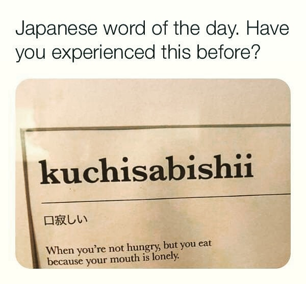 Lonely mouth 👄 😏🌮🍨🍰🍔🍹🍩 . #repost #reposting 👇 Have you? Download the official Memes App 👇 https://t.co/TyxwScDXwh . . #meme #Memes #lonely #mouth  #Food #Foodies #kuchisabishii #ohlife #mylife #japanesewordoftheday #onelink #experience #eat #hungry #yammi #fun #funny https://t.co/osN3l20ZNS