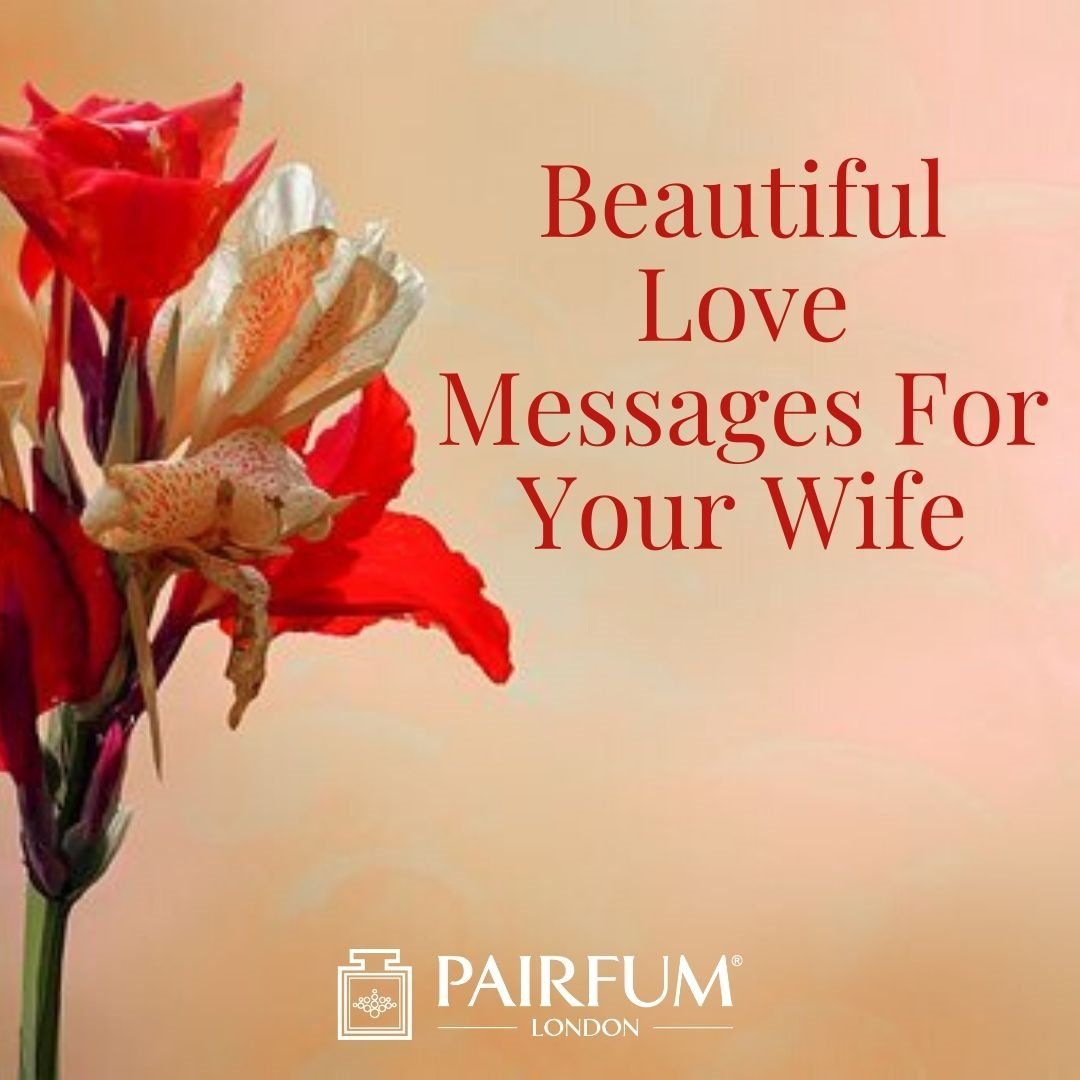 The Top 70 x 'Love Messages' For Your Partner, Wife or Husband Love Conquers All  Why fall in love with your partner, wife or husband once when you can fall in love with them over ... Read more here: https://t.co/JQXuPuksP8 #love #fashion #home #health https://t.co/x3ijWSQmzT
