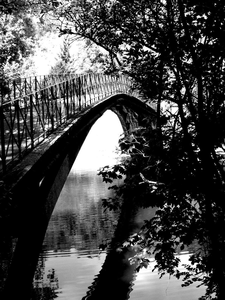 Sous le pont Mirabeau... non ce n'est pas la Seine mais un petit #pont sans nom qui enjambe le #Clain, à #Poitiers. Tiens, vous saviez qu'en #gaulois clunia<clounia renvoyait à la prairie ? Plusieurs lieux semblent tenir leur origine de ce terme ⬇️ 1/2 https://t.co/PGbtXODDje