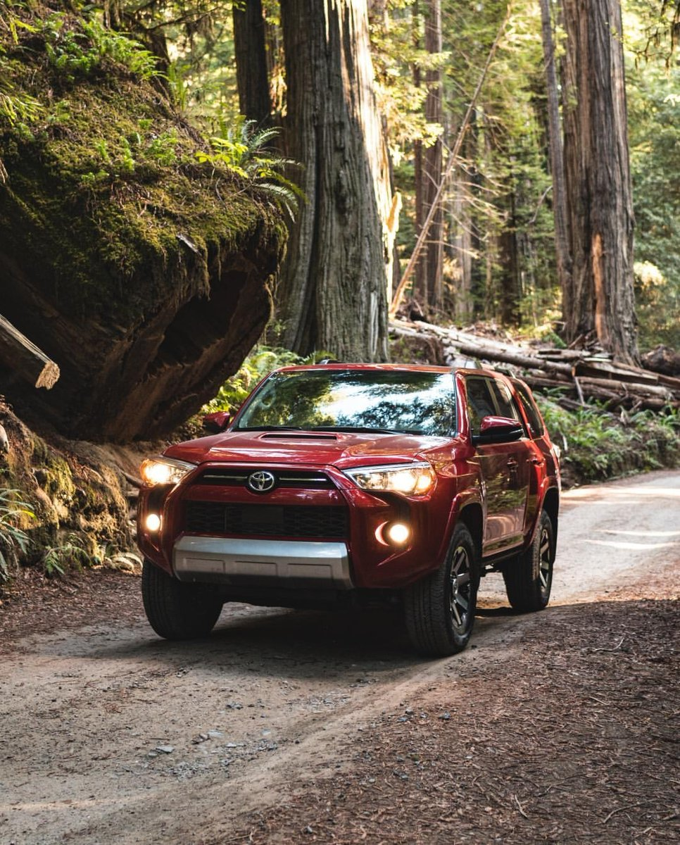 Enjoy exclusive offers and big-time savings for our extended 4th of July Sales Event! Drive home your favorite #Toyota for less! Give us a call at 307-763-5619 to get started!  pic.twitter.com/Cfr65EVxhE