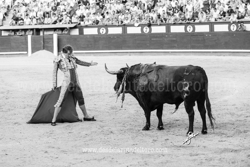 187/366 Cruzarse, exponer... Verdad, pureza, emoción. Primera Plaza del Mundo.  #toro #toros #torero #bull #bullfight #bullfighter #detalles #details #blancoynegro #blackandwhite #blancoynegrofotografia  #nikon #lasventas #roman #romancollado #sanisidro #baltasariban https://t.co/fOR5BWWZDI