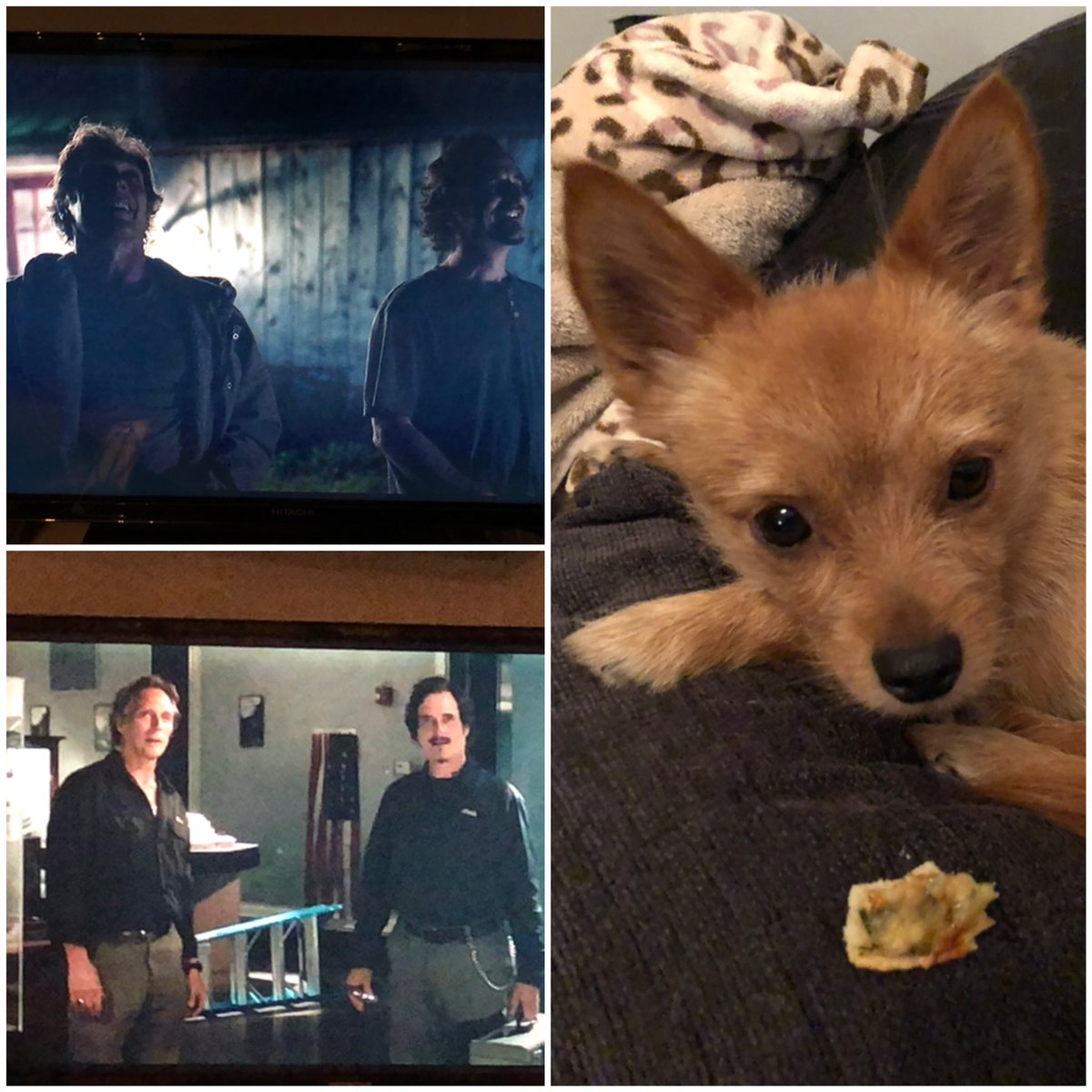 #Pizza & #movie nite with Pixie!  #ColdBrookTheFilm is just beautiful & superbly acted by @KimFCoates & William Fitchner. The world needs this feel good film right now xx  pic.twitter.com/OkK9AbKkCp