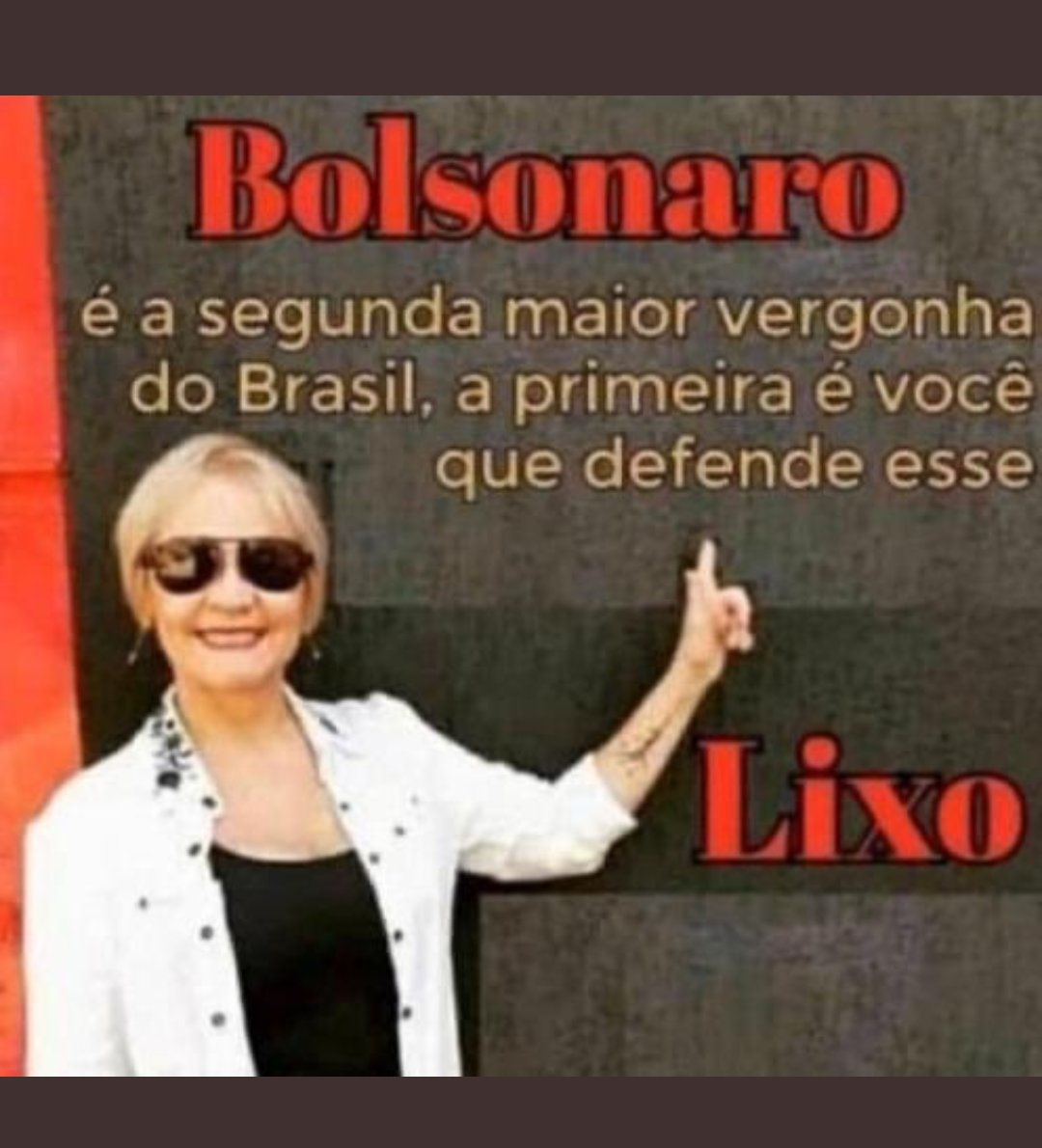 RT @iludidassso: SÓ FAV SE TIVER CORAGEM Nesse perfil odiamos o bolsonaro https://t.co/EQuOPBsV3U
