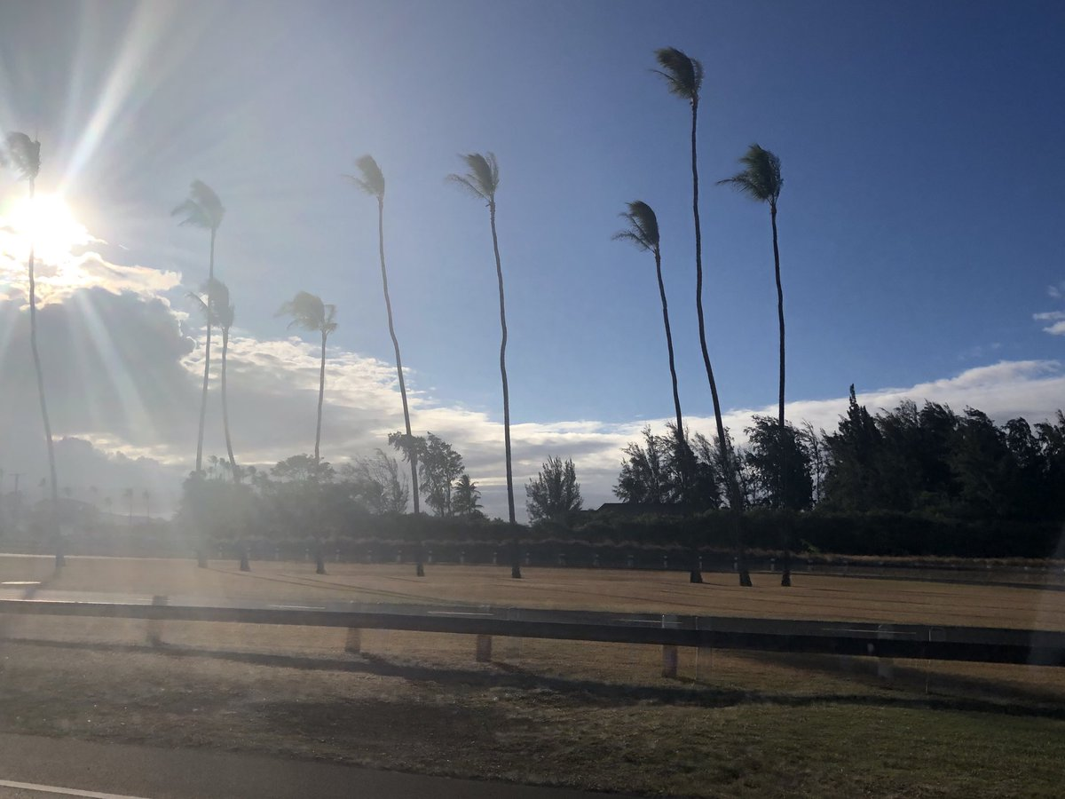 test Twitter Media - Windy and warm in Paia. #cmweather #Maui #Paia #Mauinokaoi https://t.co/jIklYXDjb3