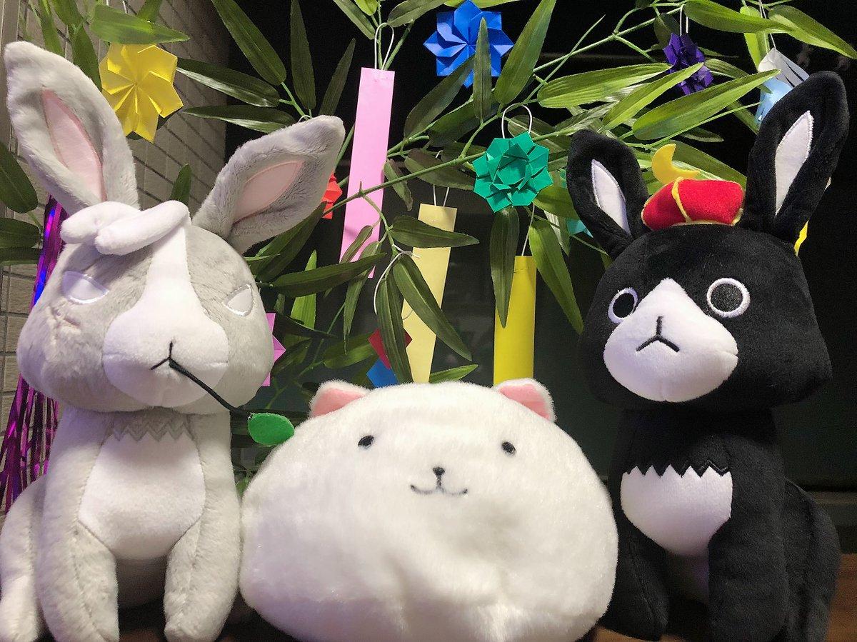 本日は7月7日、七夕の日ですっ☆ティッピー、あんこ、ワイルドギースも笹の葉を飾って楽しんでいます♪  #gochiusa https://t.co/lehIqcAsDe