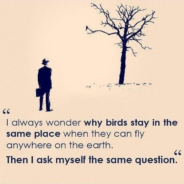 Simple yet powerful! #keepgoing #keepgroing #ambitious #keytosuccess #garyvee #inspirationbusiness #successmindset #bussinessmind #gogetter #mindsetcoach #millionairegentlemen #successminded #entrepreneurquotes #businessadvice #entrepreneurial #quotesaccount #quotes4youpic.twitter.com/9G2dpPysMT