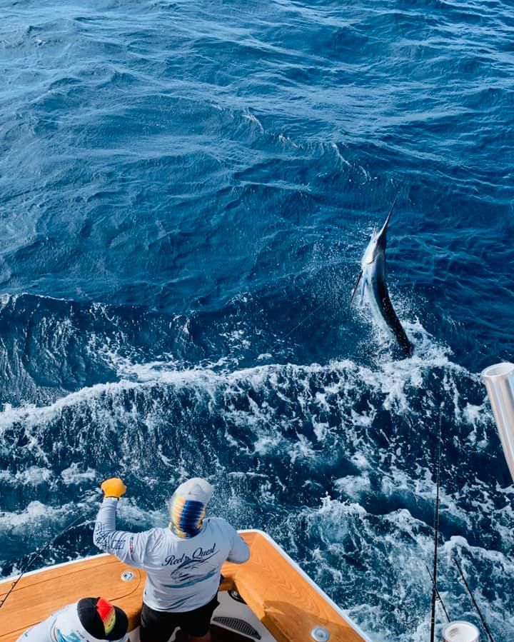 Cabo, MX - Reel Quest went 3-4 on Striped Marlin.