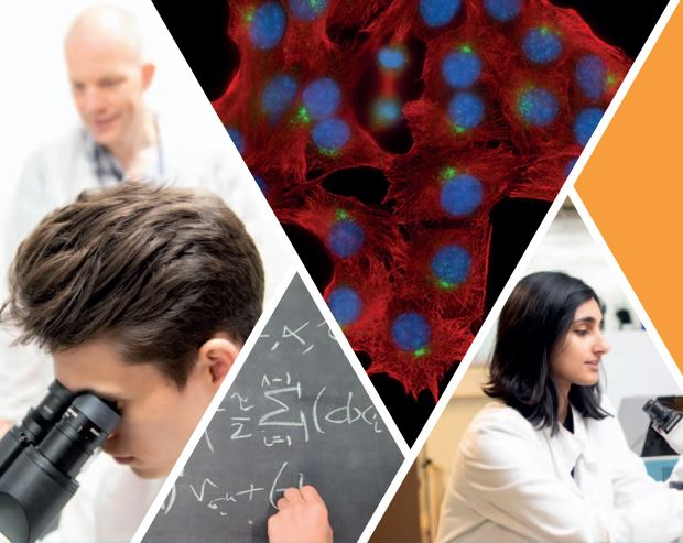 Excited by science? Our MSci Integrated Science aims to equip you to pose and answer scientific questions, using mathematics, physics, biology, chemistry and computation.   Join us at our Virtual Open Days to find out more: https://t.co/47yExXDkqc #warwickopen #openday https://t.co/rL5UCUE9Cz