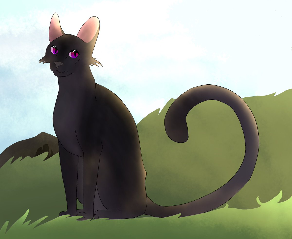 #warriorcats #warriors #warrior #cats #art #nightcloud https://t.co/pbTyUrah5B