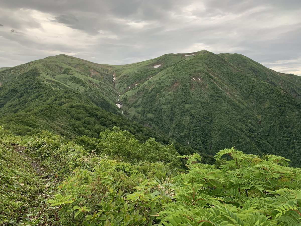 kusakabe_tatata photo