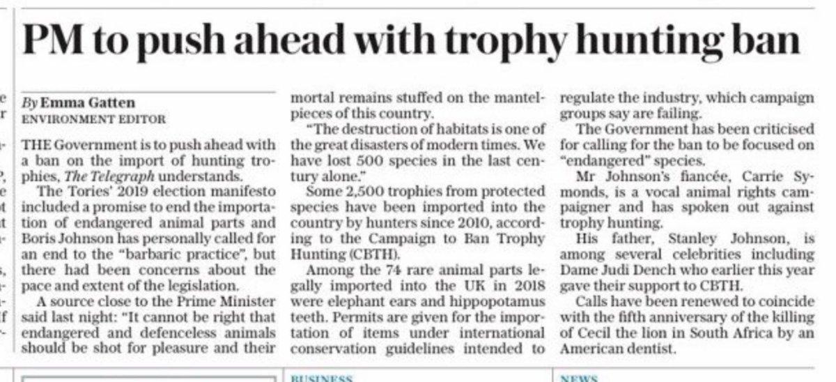 Front page of today's Daily Telegraph   Today is the 3rd anniversary of the killing of Xanda, the son of Cecil.   For the 1.7 million animals killed by Trophy Hunters over the past decade, let's hope this is true...  #BanTrophyHunting #RememberCecil #RememberXanda #GetTheBanDone https://t.co/cgpaYriM2x