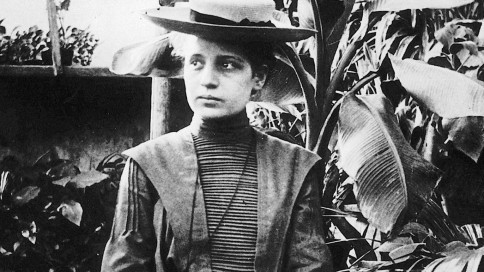 This day in science: In 1861, American geneticist Nettie Stevens was born. Stevens was best known for the discovery of sex chromosomes. #Genetics #Chromosomes #WomeninScience <br>http://pic.twitter.com/Hkj5cIM0Bh