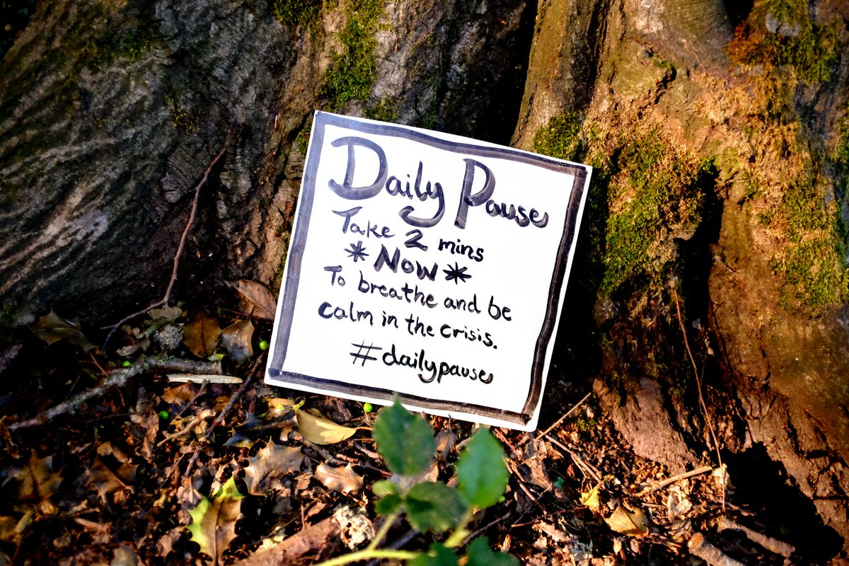 It is not always easy to be as kind as we would like. Good intentions get overpowered by reactions to all that is going on around us. Pause. Let your breath guide you back to who you want to be. #dailypause @actionhappiness