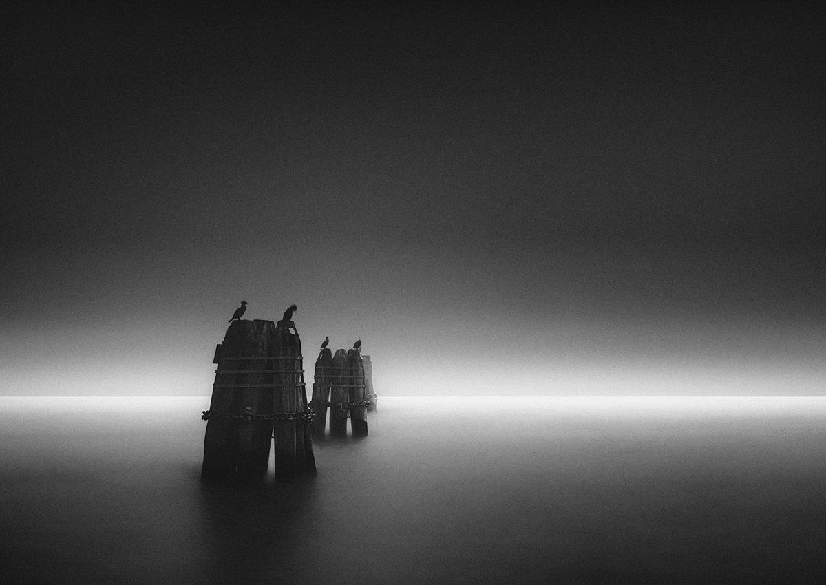 Venezia nella nebbia by Elia C: More artworks  #Photography #Digital #Nature #Landscape #Waterscape #lake #river #Art @NikonNews @NikonUSA @NIKON1917 #nikon #photographer #photo #blackandwhite #bw #monochrome #monochromatic…