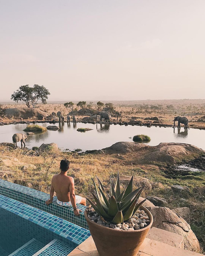 Tanzania is Providing Refreshment to Travel Freaks. Have you ever thought of Travelling to the wildlands of Tanzania to witness amazing Wilderness? https://lifetimesafaristz.com/solo-safari-tanzania…  #VisualsOfLife #MoodyGrams #outfitgrid #exklusive_shot #folkcreative #peoplescreatives #misty #streetmobspic.twitter.com/izx32vSEMt