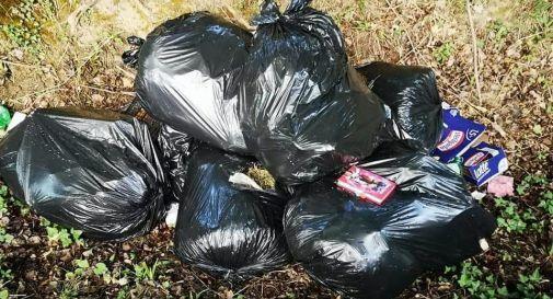Abbandona sette sacchi di immondizia: incastrato d...
