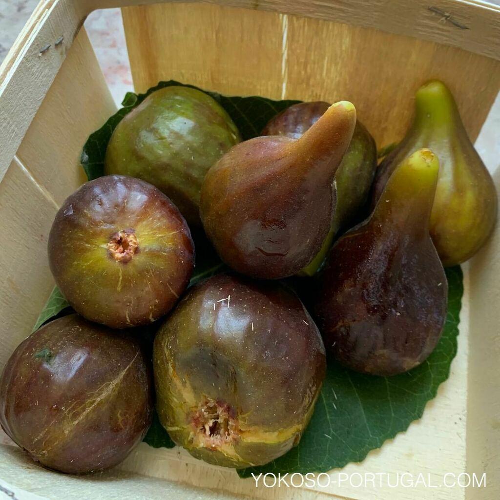 test ツイッターメディア - 甘くて美味しいポルトガルのイチジク。ポルトガルではシーズンごとに美味しいフルーツが安く食べられます。スーパーの値札は1個の値段ではなく、1kgの値段です。 #ポルトガル https://t.co/26532QwKBL