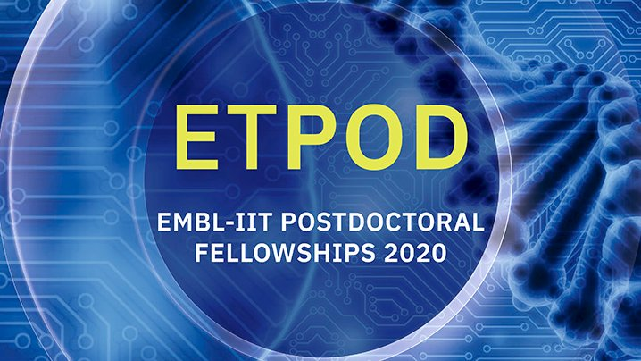 Apply for the #ETPOD #postdoc programme to receive mentorship from @embl, @emblebi and @IITalk and expand your expertise in the fields of #neuroscience, #epigenetics, #genomics, and #nanotechnology. Applications close 31 August. https://t.co/XElVBv2qe6 https://t.co/yWhMyqZaKX