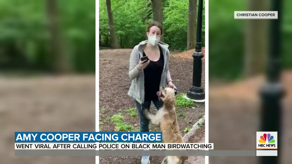 Amy Cooper, the white woman who called police on a Black birdwatcher in New York's Central Park, is now facing a criminal charge. @MorganRadford has the details.