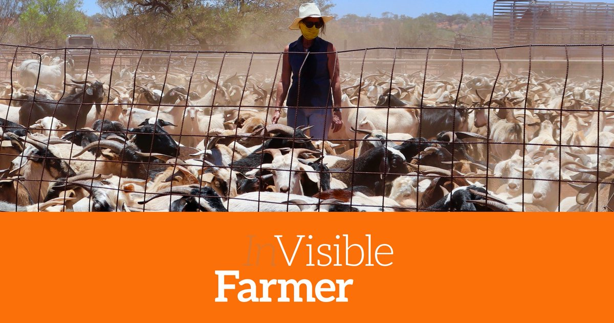It's time to put a spotlight on the long hidden face of agriculture. Check out @visiblefarmer and discover the untold stories of the gutsy women behind our food and fibre, and the vital, innovative role they play. Watch and vote: https://www.webfest.berlin/official-selection-non-fiction … #wfbtrendsetters #WFB2020pic.twitter.com/IoZFOKdoQz