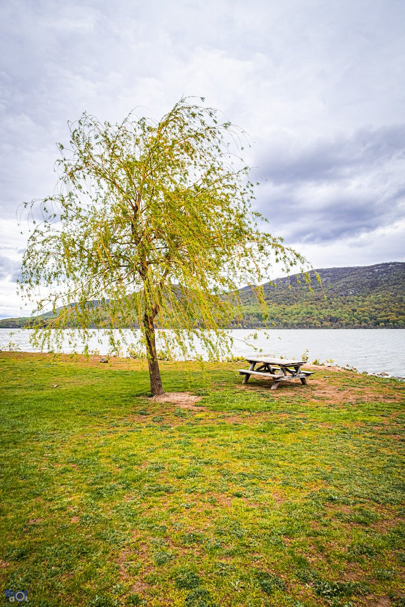 The view staying the same even in the cloudy day's, just sit back and enjoy the view. . . #view #views #viewsfordays #clouds #cloud #cloudy #cloudphotography #cloudslime #cloudyday #green #picnictable #tree #park #parks #photooftheday #street #streetwear #streetphotography