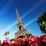 Image for the Tweet beginning: #Parigi in libertà Partenze con voli