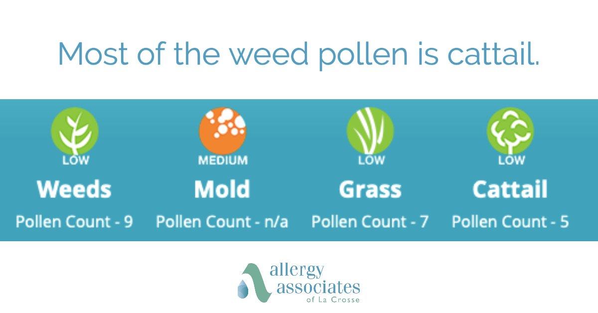 Todays pollen count. Stay cool!  #pollen #wiwx #weatherpic.twitter.com/s7BER3XYNt