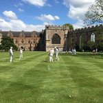 Image for the Tweet beginning: Anyone for croquet?  Taken in spring