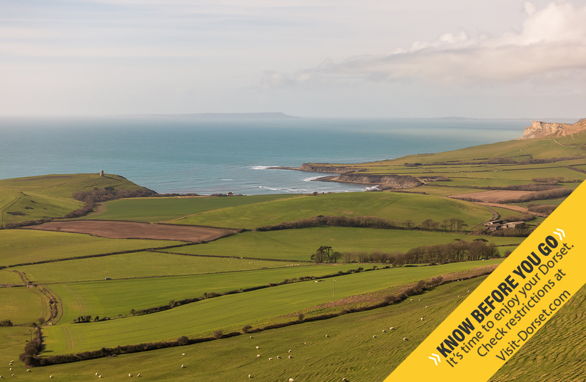 If you are thinking of visiting Dorset, please be sure to use the official destination website for Dorset to #PlanAhead and #KnowBeforeYouGo.  https://t.co/SLVzLHH4N4  #RespectProtectEnjoy #WelcomeBack https://t.co/RMtRhd0yWv