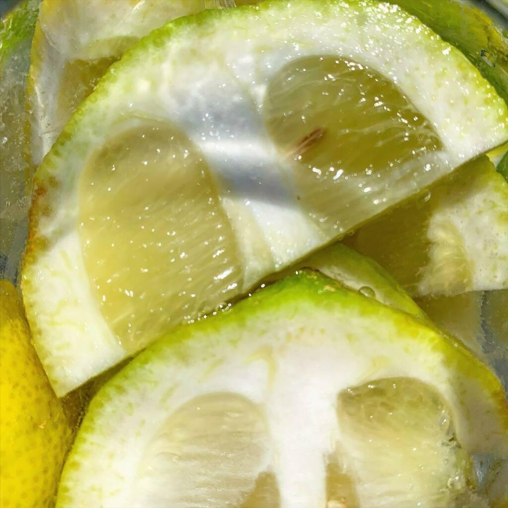 Summertime. #summertime #summer #lemon #freshness #water #drink #yellow #white #shotoniphone #igersitalia #igersemiliaromagna #igersbologna https://instagr.am/p/CCV-BD7K12b/pic.twitter.com/hgxk8KmlYP