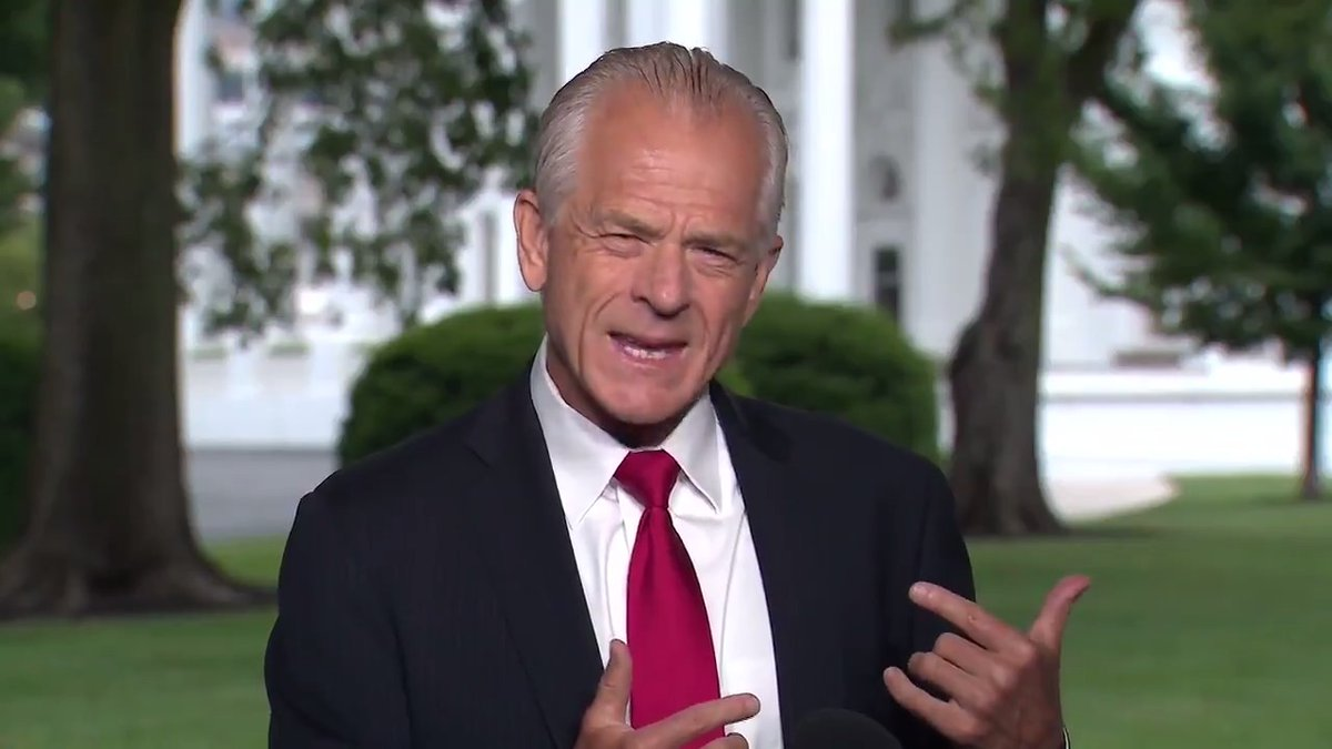 """Peter Navarro, WH Trade Advisor: """"I'm a Californian. We don't see race out there. So, you know it's like I live my life in a race-blind world, and it troubles me that we have so much of this discussion when in fact we have got real problems in this country."""""""