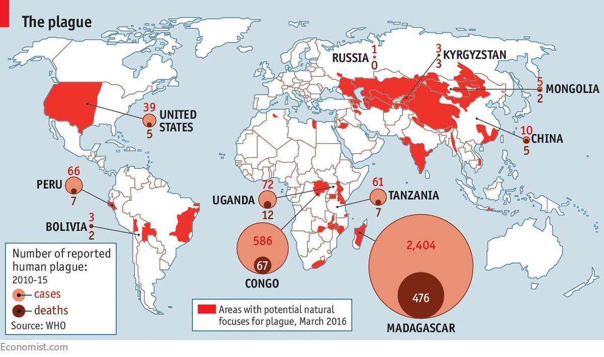 الطاعون الدملي مرض بكتيري تسجل سنوياً عدة حالات حول العالم وكان آخر تفشي للمرض بشكل كبير في مدغشقر قبل عدة سنوات ولا يوجد أمر مميز بالنسبة للحالة المسجلة في الصين خلال الأيام الماضية ولكن الإثارة الإعلامية هولت الموضوع https://t.co/6TuOWPjnoI