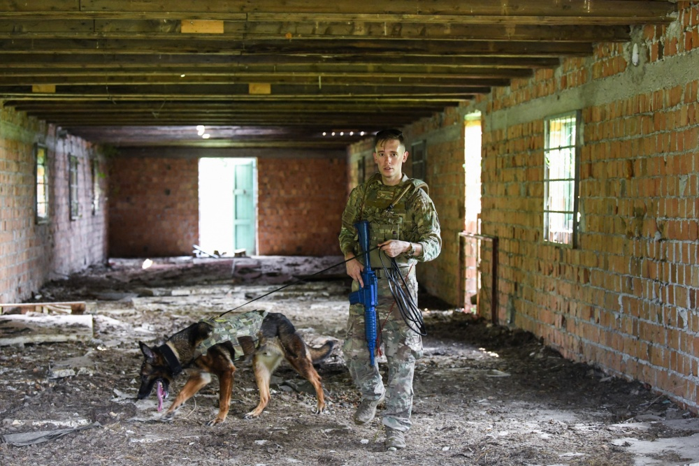 On watch! @usairforce Staff Sgt. Benjamin Howard and his military working dog, Kay, surveil the landscape in Osoppo, Italy, during Operation Porcupine.