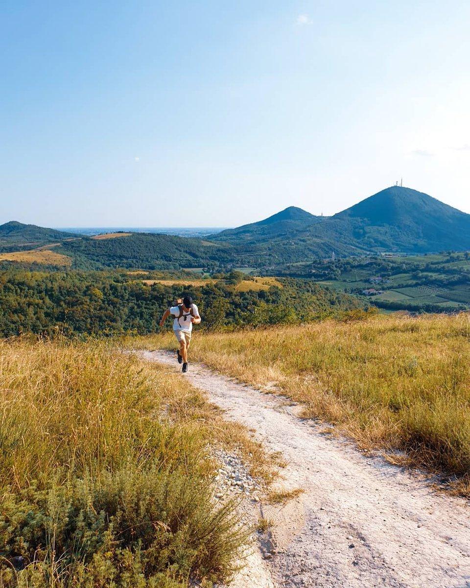 Run, boy, run!  Credit to @nickontravel  #collieuganei #padua #padova #veneto #italy #boy #travel #explore #travelling #viaggiatore #photographer #summer #tarionpic.twitter.com/Ad7p0wmyTu
