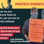 Image for the Tweet beginning: Luis Jiménez, dairy farm worker