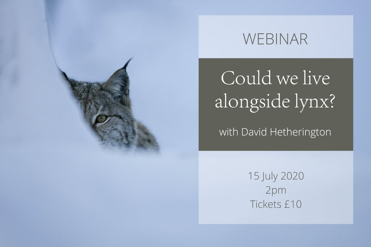 Join David Hetherington, author of The Lynx & Us on 15 July for an unmissable webinar. David offers a fascinating insight into how lynx & people interact elsewhere, his commentary complemented by Laurent Geslin's spectacular collection of wild lynx images. us02web.zoom.us/webinar/regist…