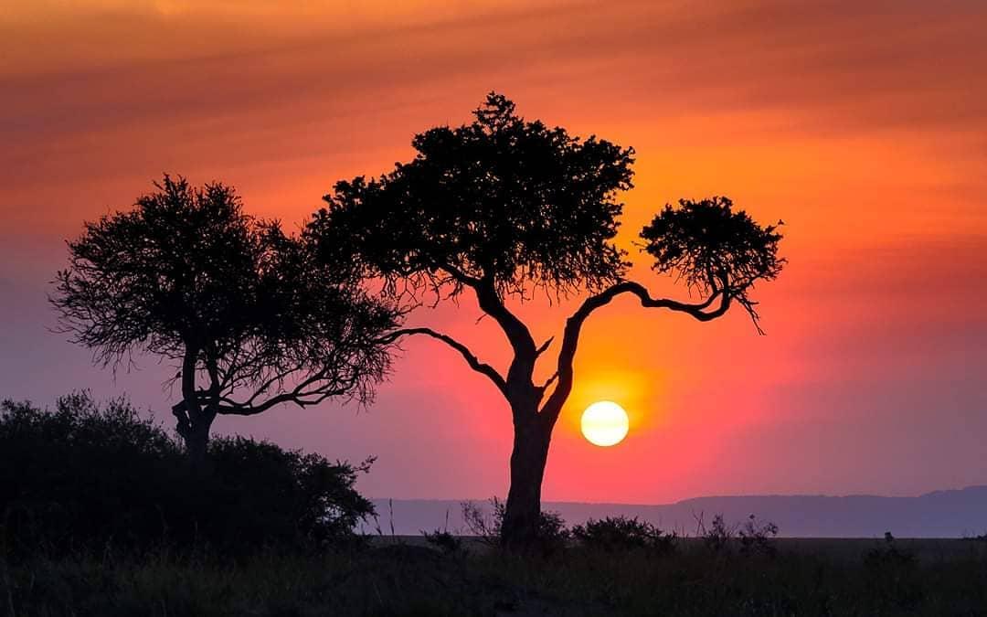 Colourful sunset in the Mara. Photo byVignesh Ramachandran