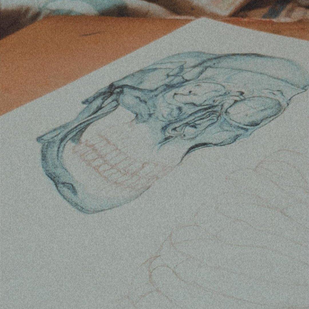 I hEarD tWttiEr APrecIaTe aRt  #skull #Artpic.twitter.com/w4P1YWjNJD