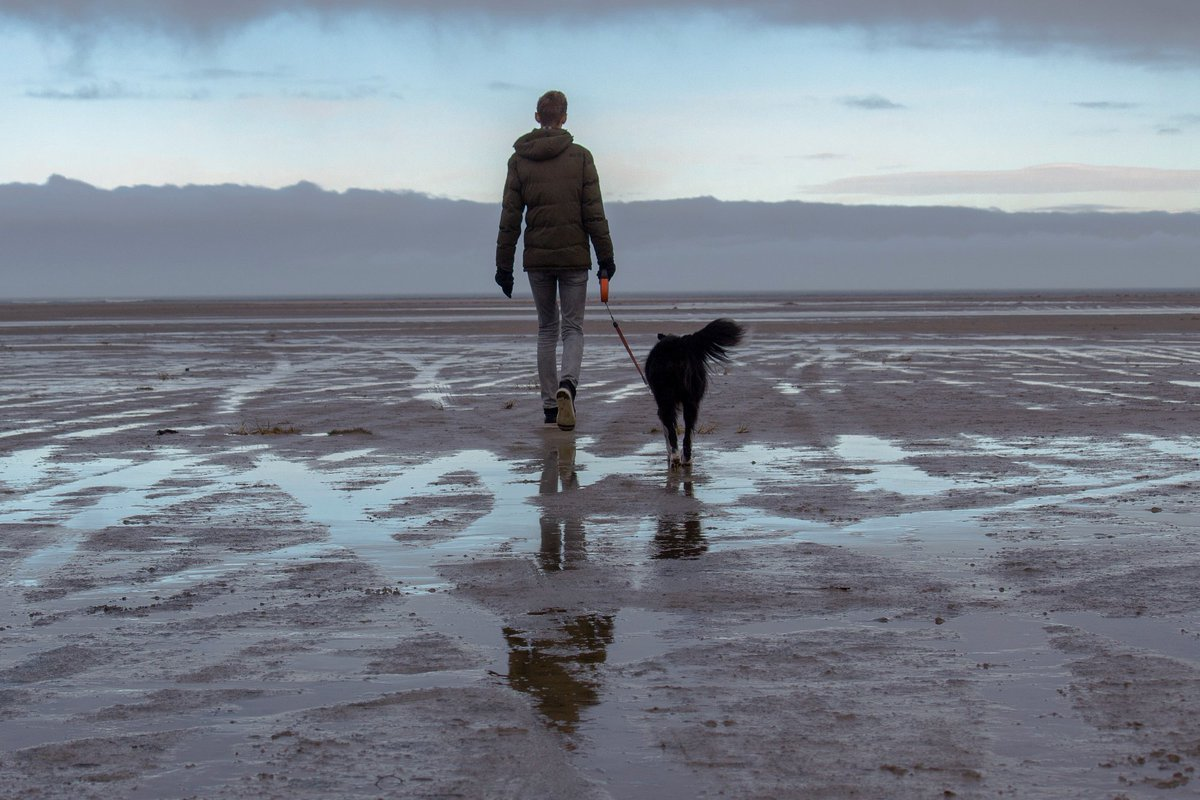 Walking #shelterdogs has been shown to benefit both human and animal #health. In this study, walking shelter dogs for 30 minutes each day lowered #PTSD symptoms for some military #veterans.pic.twitter.com/pjbmqqG0y4