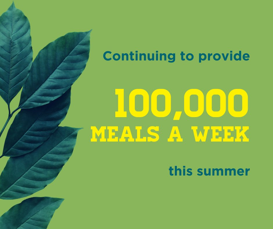 Summer is in full swing at The Sheridan Story. We're continuing to provide 100,000 meals a week to meet the urgent need. From partnerships with school districts & the MN Department of Education to our produce initiative, learn about our summer programs at